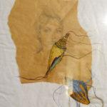 Céline Louvet disegno contemporaneo